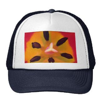 Pistil and stamen of a tulip mesh hat