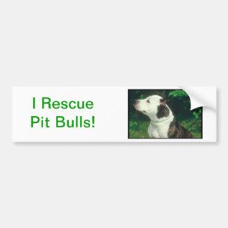 Pit Bull Bumper Stickers