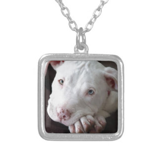 pit_bull_filhote.jpg silver plated necklace