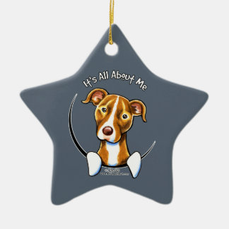 Pit Bull :: It's All About Me Christmas Ornament