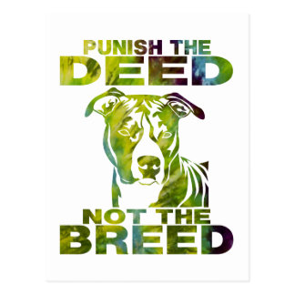 PIT BULL PUNISH THE DEED NOT THE BREED TD5A POST CARDS