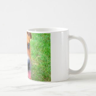 Pit Bull Puppy Close-up Basic White Mug