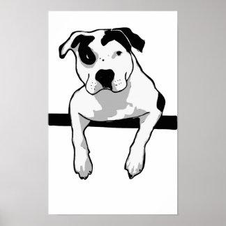 Pit Bull T-Bone Graphic Poster
