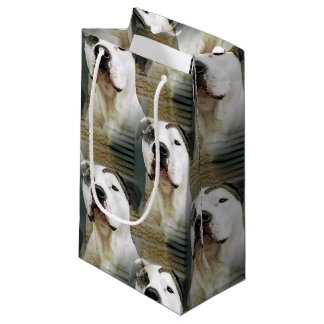 Pit Bull T-Bone Small Gift Bag