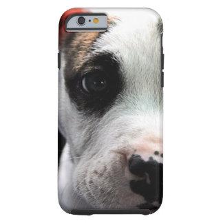 Pit Bull T-Bone Tough iPhone 6 Case