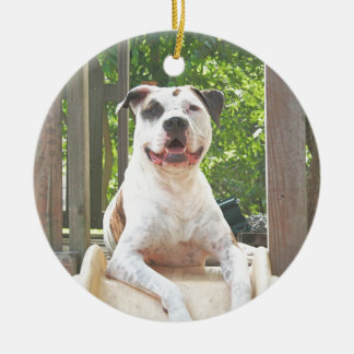 Pit Bull T-Bone's Tree House Christmas Ornament