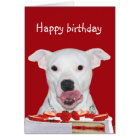 Pit Bull Terrier Birthday Card