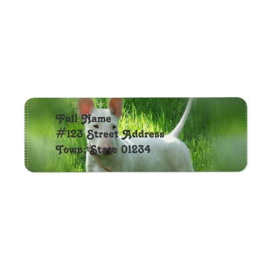 Pit Bull Terrier Return Address Label