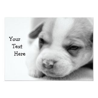 Pit Puppy Invitation