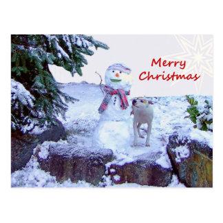 Pitbull and Snowman Christmas Postcard Postcard