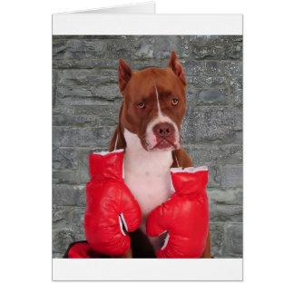 Pitbull Boxer Card