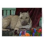 Pitbull Christmas Cards Violet
