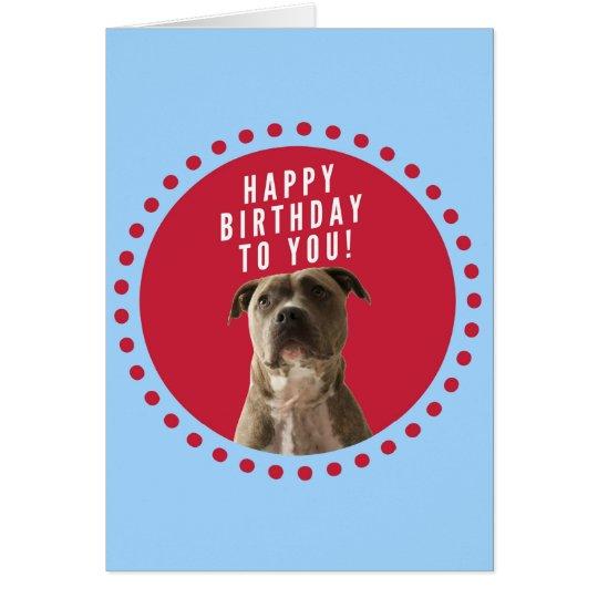 Pitbull Dog Happy Birthday Blue Greeting Card