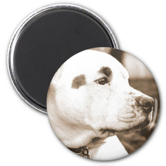 pitbull dog sepia color hate deed not breed 6 cm round magnet