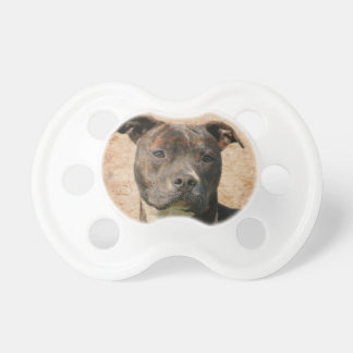 Pitbull face baby pacifiers