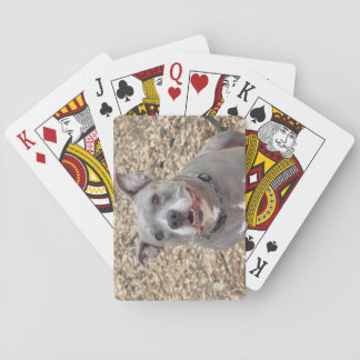 Pitbull Happy Sarge Playing Cards
