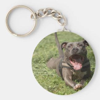 Pitbull In Grass Key Ring