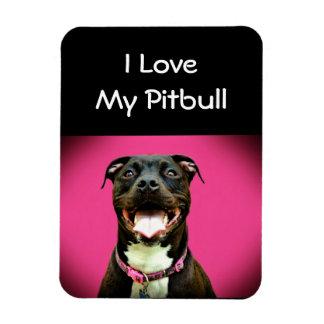 Pitbull Love Rectangular Photo Magnet