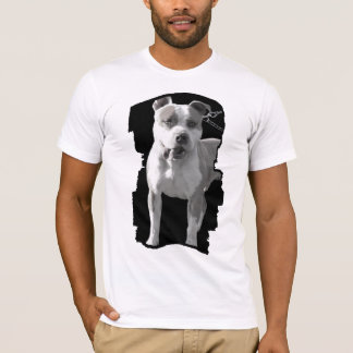 pitbull mens fitted shirt
