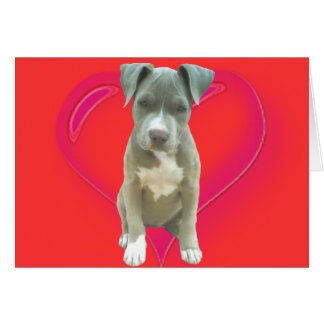 Pitbull puppy greeting card