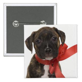 Pitbull puppy wearing red ribbon 15 cm square badge