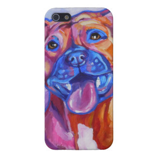 Pitbull Smile Case Savvy iPhone 5 Glossy Finish