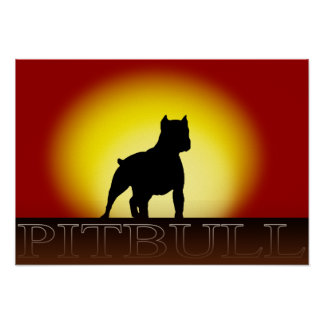Pitbull Sunset Poster