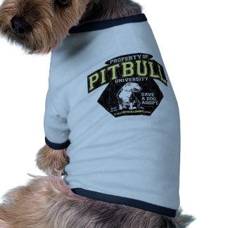 PITBULL University Ringer Dog Shirt