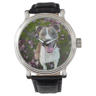 Pitbull Watch