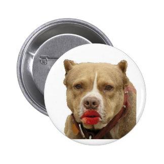 Pitbull Wearing Lipstick Button