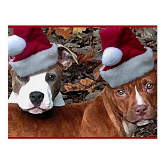 Pitbulls Christmas Postcards