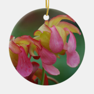 Pitcher Plant Family Christmas Tree Ornament