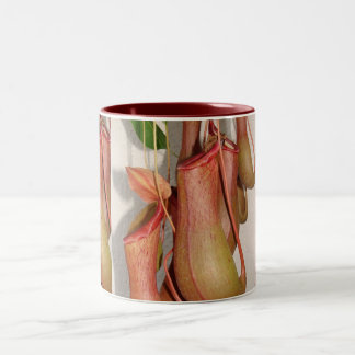 Pitcher Plant Two-Tone Mug