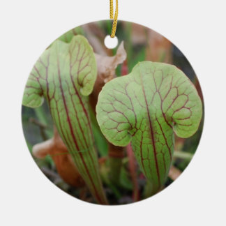 Pitcher Plants Ornaments