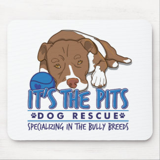 pits_front mouse pad