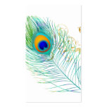 PixDezines peacock plume/diy background colour Pack Of Standard Business Cards
