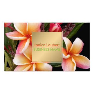 PixDezines Penang Peach Plumeria Pack Of Standard Business Cards