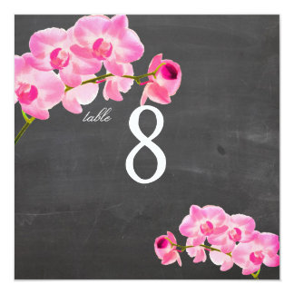 PixDezines pink maui orchids/table numbers Card