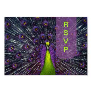 PixDezines rsvp Peacock Feather 9 Cm X 13 Cm Invitation Card
