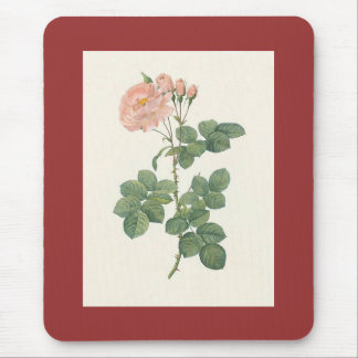 PJ Redoute - Rosa damascena aurora Mouse Pad
