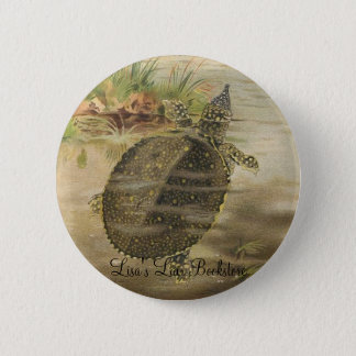 PJ Smith - Soft-Shelled River Tortoise 6 Cm Round Badge