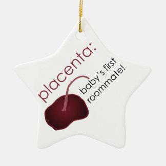 placenta ornament