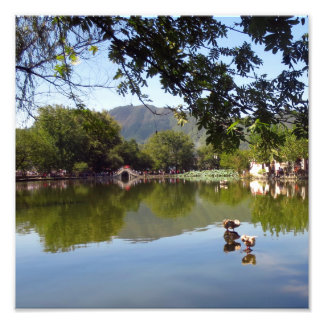Placid mirror lake photo
