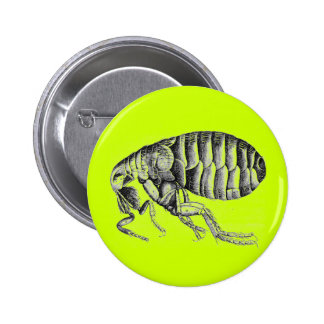 Plague flea 6 cm round badge