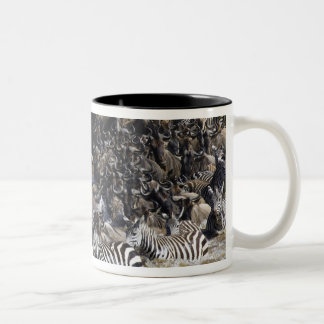 Plains Zebra (Equus quagga) and Blue Wildebeest Two-Tone Coffee Mug