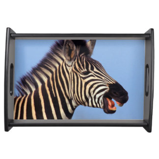 Plains Zebra (Equus Quagga) Calling Serving Tray