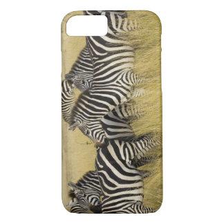 Plains Zebra (Equus quagga) in grass, Masai Mara 2 iPhone 8/7 Case
