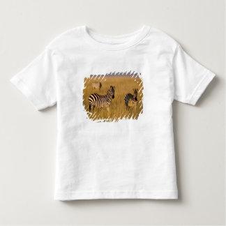 Plains Zebra (Equus quagga) in grass, Masai Mara Toddler T-Shirt