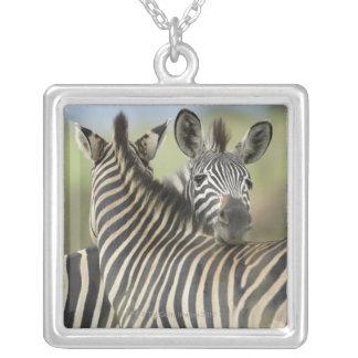 Plains Zebra (Equus quagga) pair, Haga Game Silver Plated Necklace