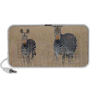 Plains zebra (Equus quagga) with foal Mp3 Speakers